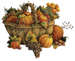 Autumn-Harvest