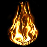 firefs