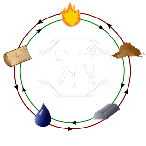utjecaj elemenata na psa