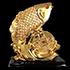 arowanafish