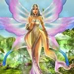 fairy11