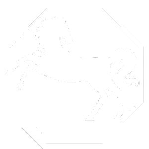 horse-chinese-zodiac-profile