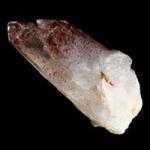quartz-harlequin