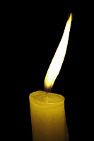 yellowcandle